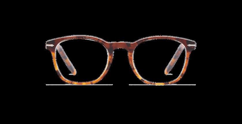 Lunettes de vue homme LONGCHAUMOIS marron/écaille - Vue de face