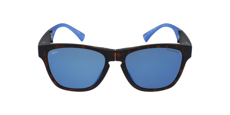 Lunettes de soleil homme GEANT écaille/bleu