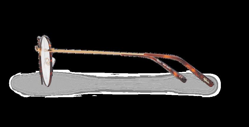 Lunettes de vue MATT écaille/doré - Vue de côté