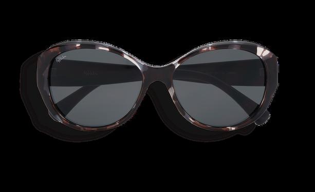 Lunettes de soleil femme MARTINA écaille/noir - danio.store.product.image_view_face