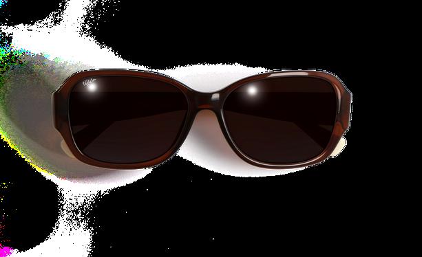 Lunettes de soleil femme EVE marron - danio.store.product.image_view_face