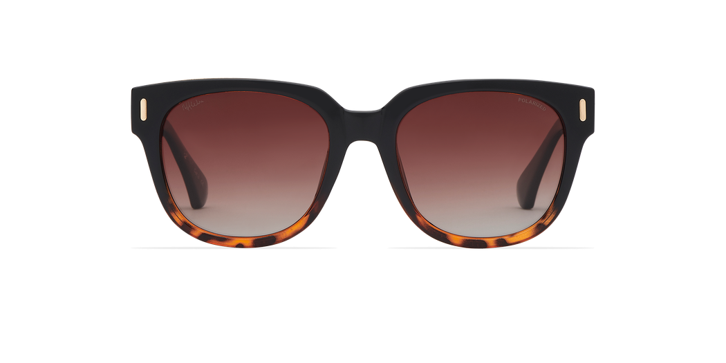 MONOI POLARIZED
