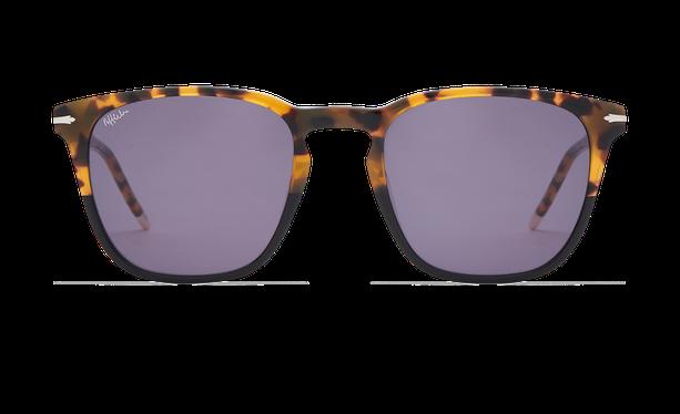 Lunettes de soleil homme HUNTER écaille/noir - danio.store.product.image_view_face
