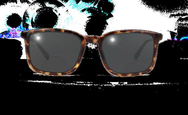 Lunettes de soleil homme SILVIO écaille - danio.store.product.image_view_face