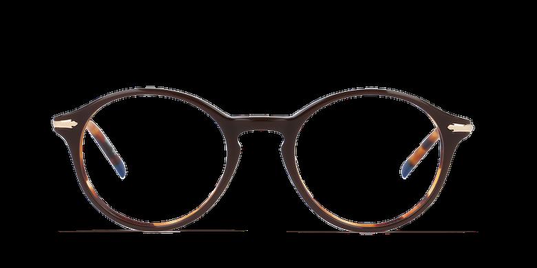 Lunettes de vue homme HARLOW marron/écaille
