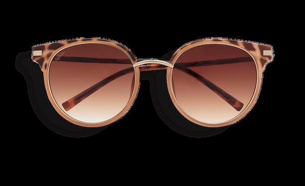 Lunettes de soleil femme BARCELO écaille/marron - danio.store.product.image_view_face
