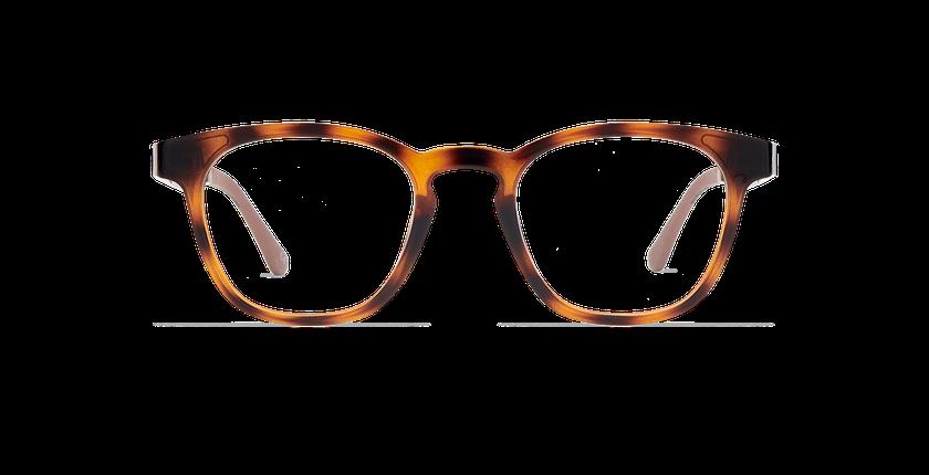 Lunettes de vue SMART TONIC 15 écaille/écaille brillant - Vue de face