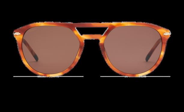 Lunettes de soleil homme MALTON écaille/doré - danio.store.product.image_view_face