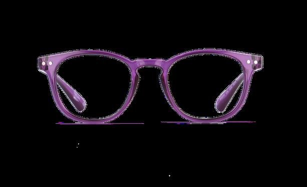 Lunettes de vue homme BLUE BLOCK HOMME violet - danio.store.product.image_view_face