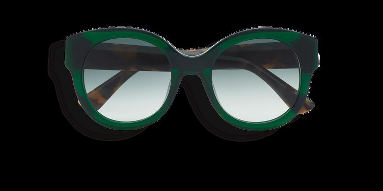 Lunettes de soleil femme CINDY vert/écaille