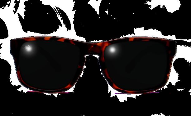 Lunettes de soleil homme DYLAN POLARIZED écaille - danio.store.product.image_view_face