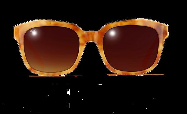 Lunettes de soleil femme ADELAIDE écaille - danio.store.product.image_view_face