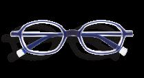 Image d'une monture REFORM de couleur bleue