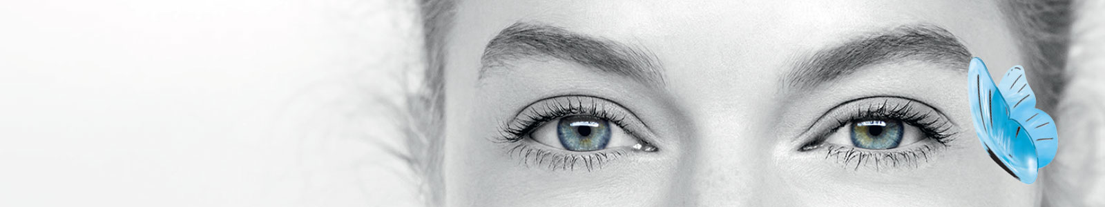bdd16f51143bf Lentilles de contact bi-mensuelles - Afflelou.com